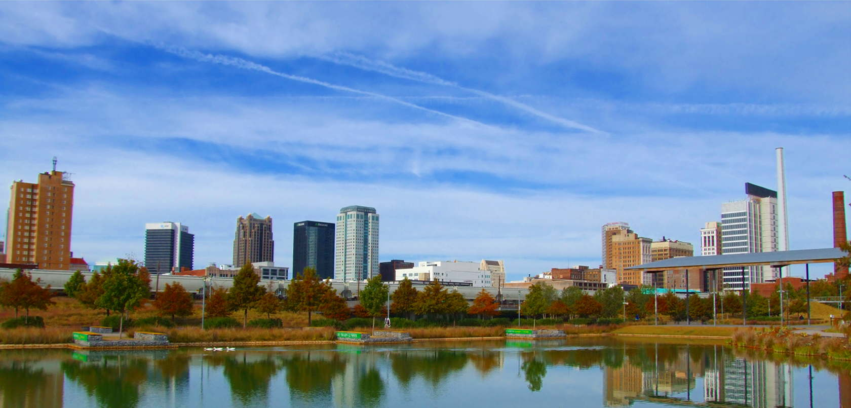 Haynes Neurosurgical group's Birmingham's skyline from Railroad Park
